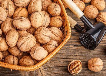walnuts-odisha