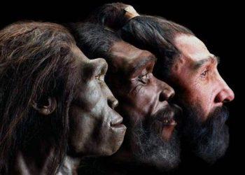 primitive humans Homo Erectus
