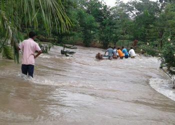 Jaduguda Eco Tourism Park in Malkangiri under water