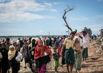 Rohingyas urge India to create safe conditions for return