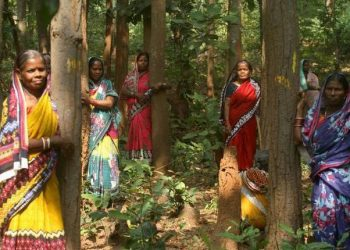 Cong, BJP seek probe into tree-felling for brewery unit