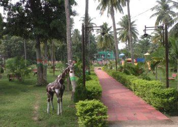 Pilgrims sore over lack of basic facilities at Baladevjew temple