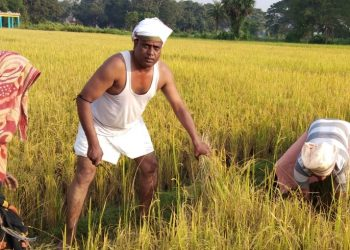 Sarpanch turns Good Samaritan for poor farmers