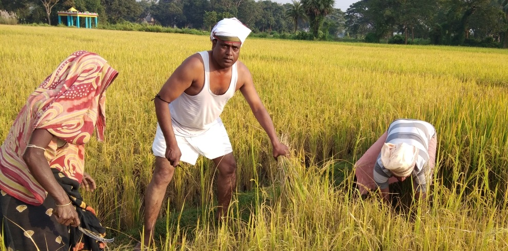 Sarpanch turns Good Samaritan for poor farmers