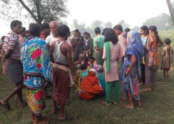 Tusker batters farmer to death in Dhenkanal
