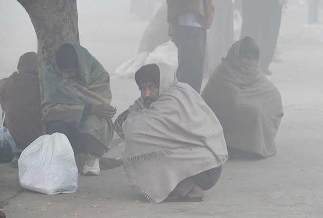 , At 2.6 degrees C, Delhi records season's lowest temperature