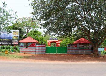 Jungle Safari in Chandaka