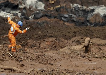 Rescue work try to reach a cow that is stuck in a field of mud, two days after a dam collapse in Brumadinho, Brazil, Sunday, Jan. 27, 2019. Brazilian officials on Sunday suspended the search for potential survivors of a dam collapse that has killed at least 40 people amid fears that another nearby dam owned by the same company was also at risk of breaching. (AP)