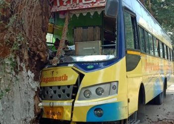 Close shave for 30 pilgrims as bus rams tree