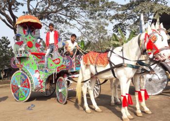 Akram Horse Supply_ Jagatpur_ Cuttack