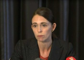 Ardern said she had read 'elements' of the lengthy, meandering and conspiracy-filled far-right 'manifesto'.