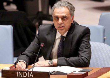 India's Permanent Representative to the UN Ambassador Syed Akbaruddin. (Image: PTI)