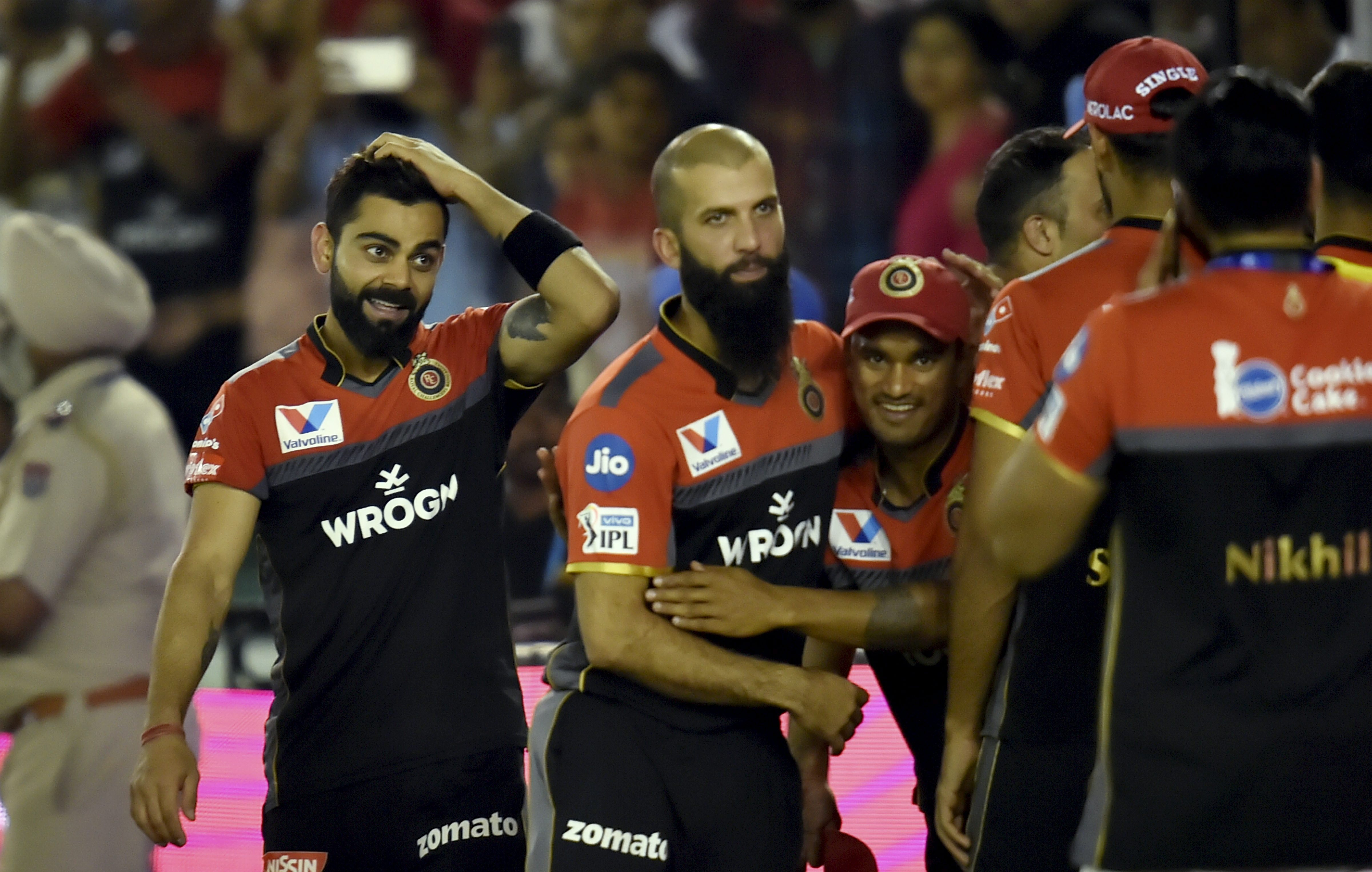 IPL 2019: Steyn replaces Coulter-Nile in Royals Challengers Bangalore squad
