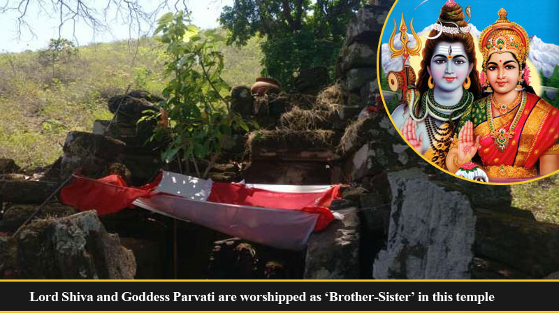 Lord Shiva and Goddess Parvati are worshipped as 'Brother-Sister' in