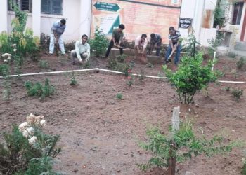 Nuapada: Youths turn green crusaders