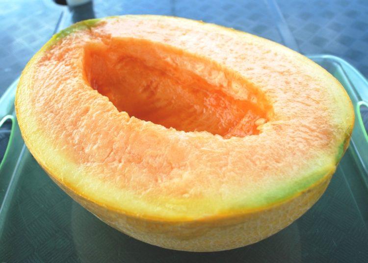 buah tembikai yubari