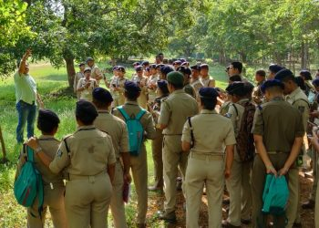 113 units to conduct wildlife census in Satkosia