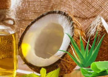 Care for your hair with aloe vera, coconot oil