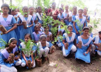 Mega plantation drive involving schoolchildren to be launched