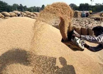 No action against defaulting rice millers