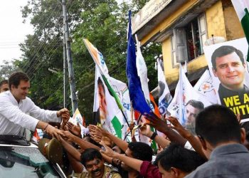On his first visit to his constituency after being elected to Lok Sabha, Gandhi addressed party workers at Kalpetta, Kambalakadu and Panamaram during a roadshow Saturday.