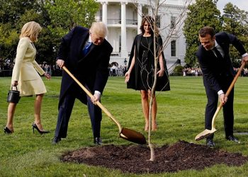 It was a symbolic gesture: the tree came from a northern French forest where 2,000 US Marines died during the First World War.