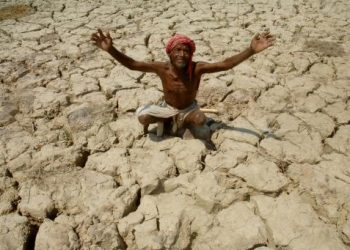 Mayurbhanj on the brink of drought as rains disappear