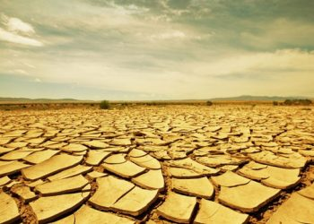 Bhadrak too stares at drought-like situation