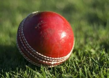 Earley Cricket Club in Reading a town 40 miles (64 kilometres) west of London had already introduced a vegan tea for their players.