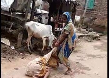 Woman assaults elderly mother-in-law
