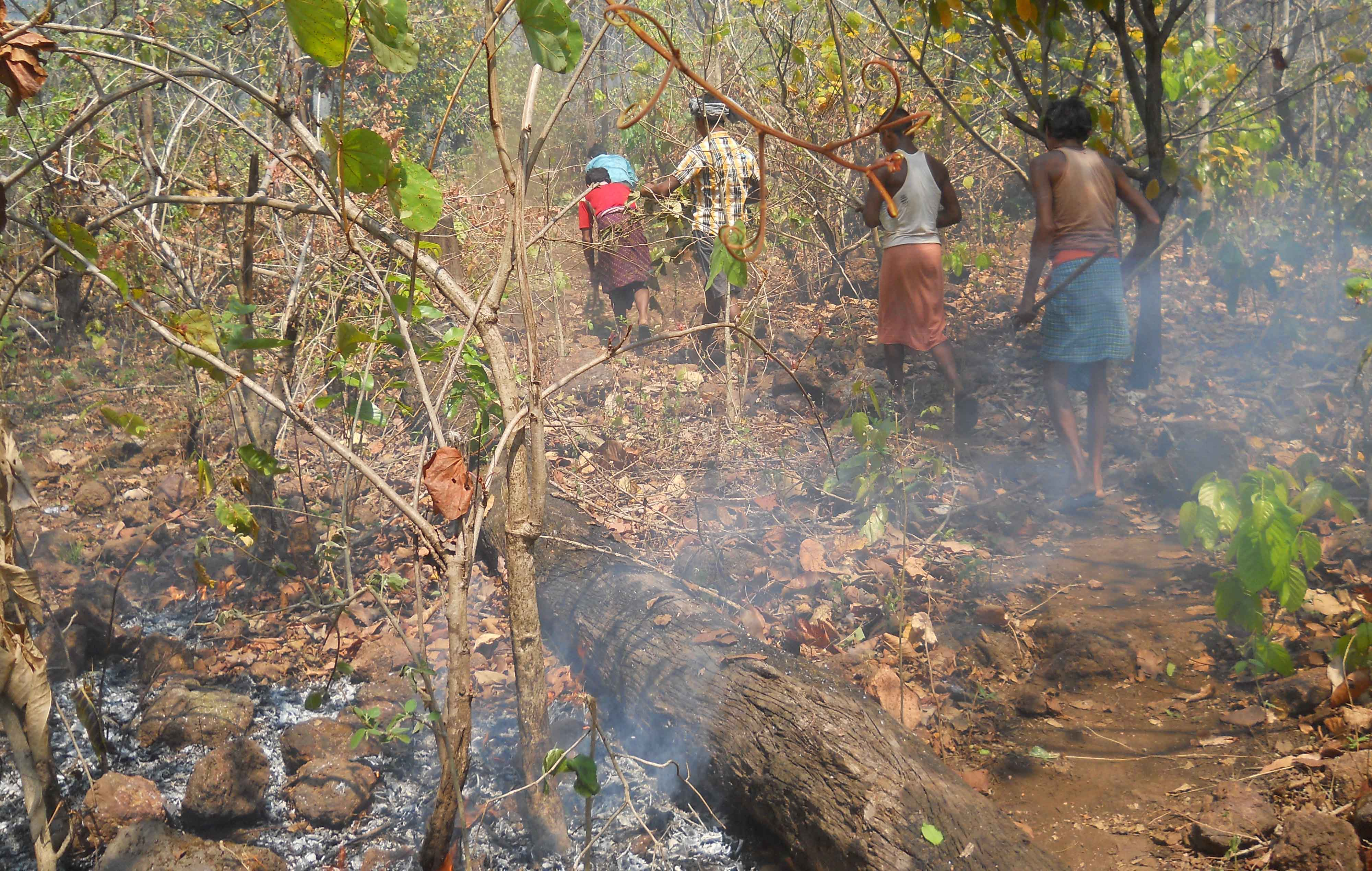 Community members extinguishing fire in jungle