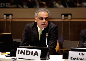 India's Permanent Representative to the UN Syed Akbaruddin.
