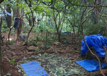 Maoist camp busted in Bolangir