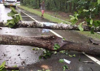 Maoists call 24-hr Odisha bandh, block roads in Kandhamal