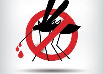 7 tested positive for Dengue in Jaleswar