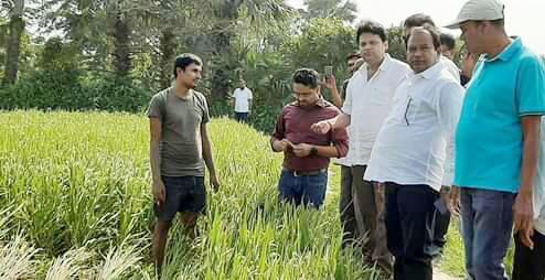 MLA, officials assess crop loss