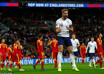 Harry Kane celebrates after scoring a goal