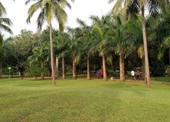 File photo of Forest Park in Bhubaneswar