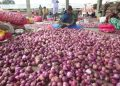 Onion prices four times higher than last year