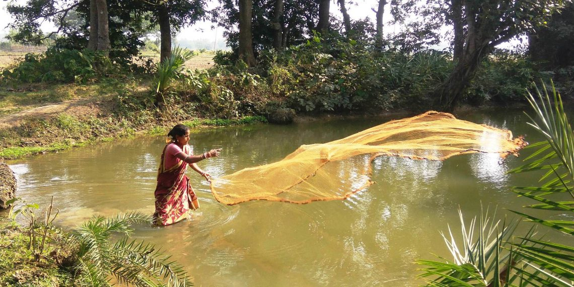 Homemaker scripts success story with aquaponics
