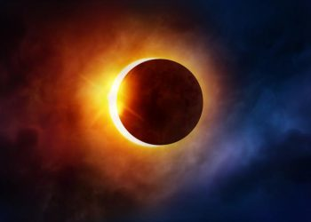 Government declares December 26 holiday for schools colleges due to solar eclipse