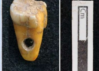 Do you know human teeth used as pendants in Turkey 8,500 years ago?