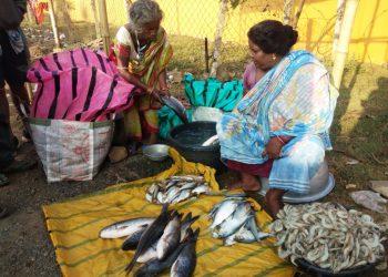 This woman is killing it in Keonjhar fish market