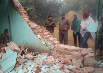 Team formed to prevent elephant herd entering villages close to Telkoi forest