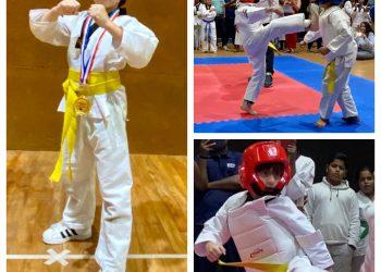 Shah Rukh Khan's son AbRam wins gold medal in Taekwondo; SRK informs via twitter