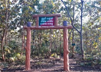 Kapilas Wildlife Sanctuary cries for attention