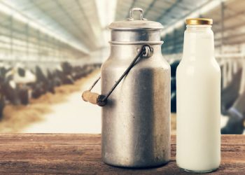 Intake of dairy milk may increase breast cancer risk