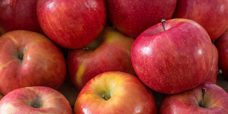 Know when these common fruits should be eaten