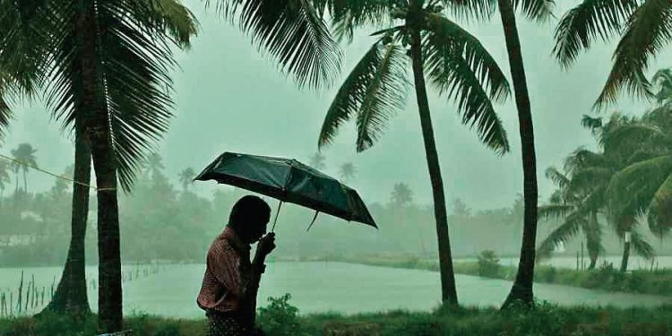 IMD issues rainfall, lightning warning for these districts