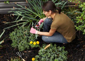 Gardening helps grow positive body image too